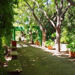 Rancho Los Alamitos Historic Ranch and Gardens